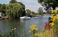 Walton on Thames